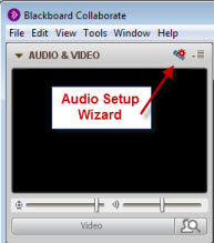 Click this icon for the Audio Setup Wizard